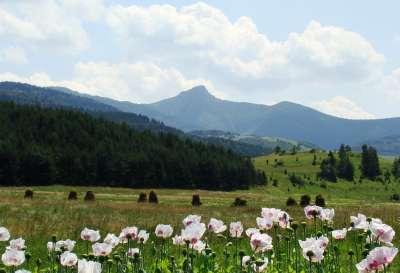Rájecká dolina foto