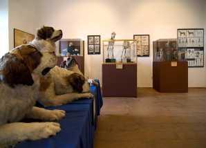 Europäische Hundemuseum foto