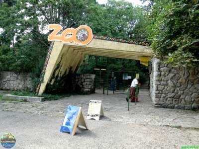 Zoo Pécs  foto