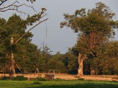 Přírodní park Hortobágy foto