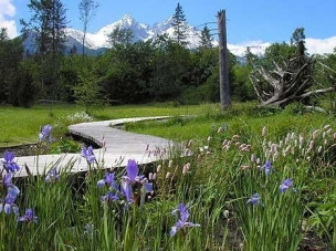 Botanická zahrada Tatranská Lomnica foto