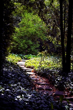 Botanická zahrada a arboretum Mendelovy Univerzity foto