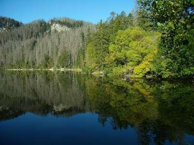 Plešné jezero foto