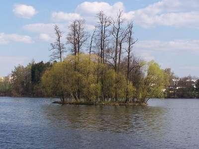 Rybník Vajgar foto