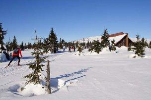 Ski areál Strážné foto