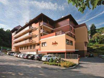 WELLNESS HOTEL REZIDENCE AMBRA foto