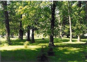 LD Veľká Fatra - park
