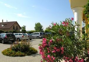 Zahrada a parkoviště