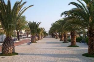 Marche (Palmová riviéra) foto