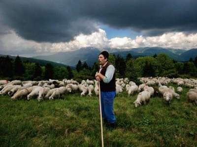 Festival pastýřské kultury