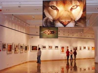 Maďarské přírodní muzeum  foto