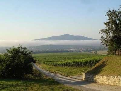 Vinařská oblast Tokaj foto