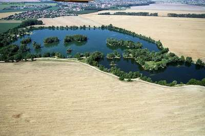 Rybníky Komjatice foto