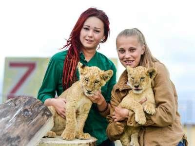 Zoo Kontakt foto