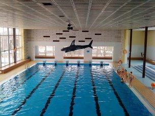 Krytý bazén Mohelnice foto