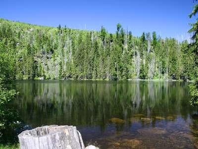 Prášilské jezero foto