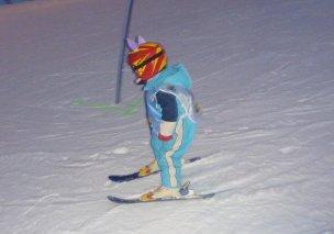 Ski areál Přívrat foto