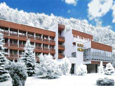 HOTEL FLÓRA foto
