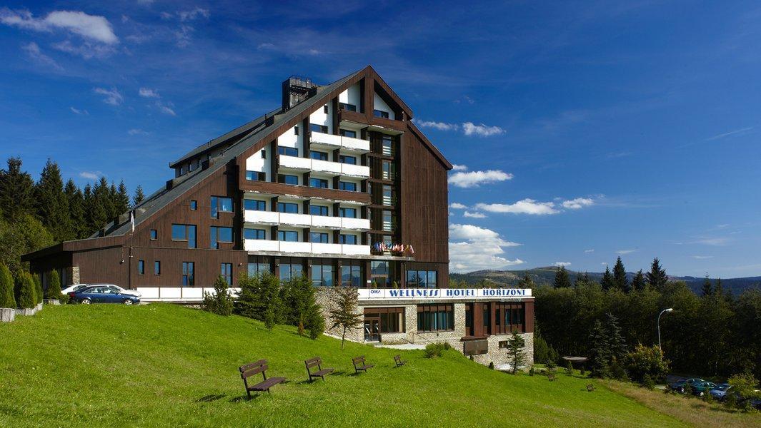 Jediný hotel na Železnorudsku s bazénem s protiproudem, whirlpool, masážním vodním chodníkem, saunou a římskými lázněmi.